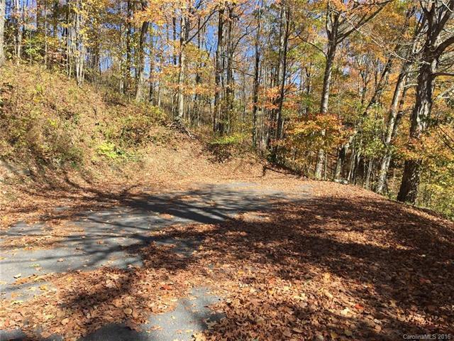 21 Cottage Lane, Mars Hill, NC 28754 (#3227416) :: Team Southline