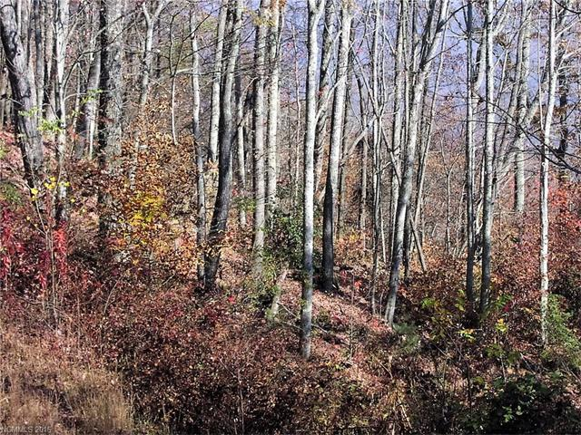 00 Bridal Veil Lane #104, Waynesville, NC 28785 (#3231677) :: Mossy Oak Properties Land and Luxury