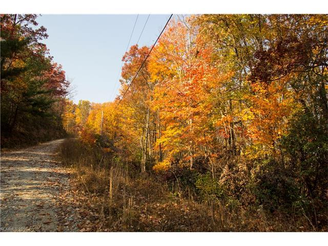 Lot 78 Oak Laurel Road #78, Brevard, NC 28712 (#3232143) :: Leigh Brown and Associates with RE/MAX Executive Realty