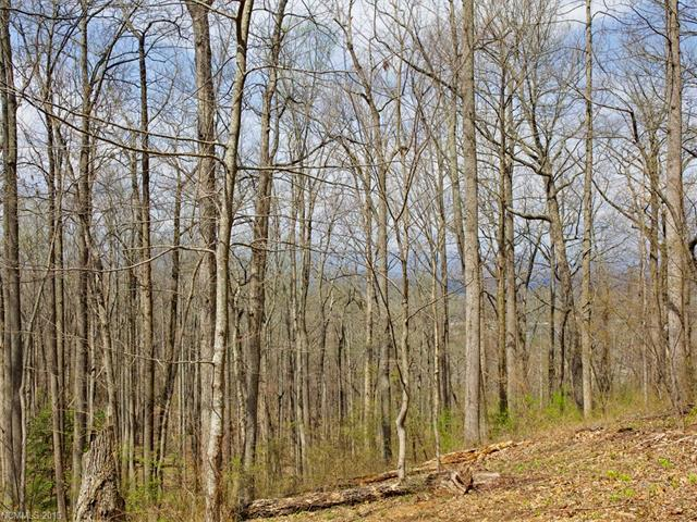 99999 Old Forest Drive Lot 3C, Asheville, NC 28803 (#3232225) :: Rinehart Realty