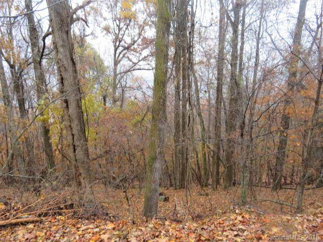 TBD Chestnut Ridge Road Lot#35, Mills River, NC 28759 (#3232317) :: Johnson Property Group - Keller Williams