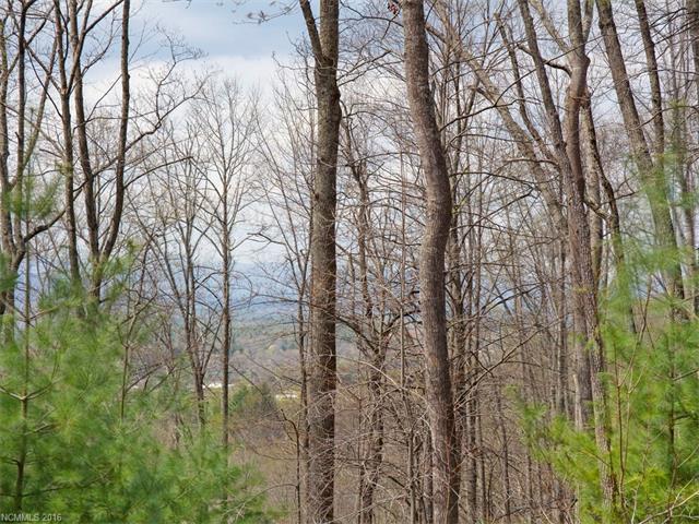 64 Giffords Lane #11, Asheville, NC 28803 (#3232330) :: Rinehart Realty