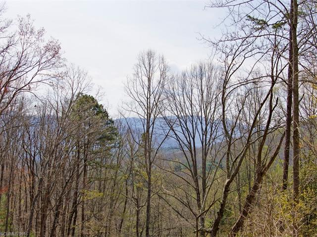 9999 Old Forest Drive #18, Asheville, NC 28803 (#3232343) :: Rinehart Realty