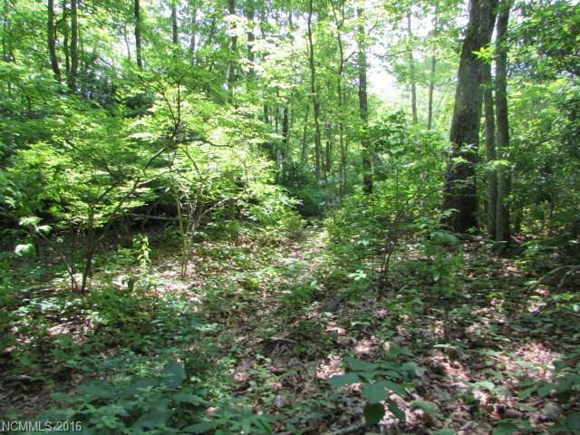 Lot#30 Trails End Road, Little Switzerland, NC 28749 (#3232663) :: Roby Realty