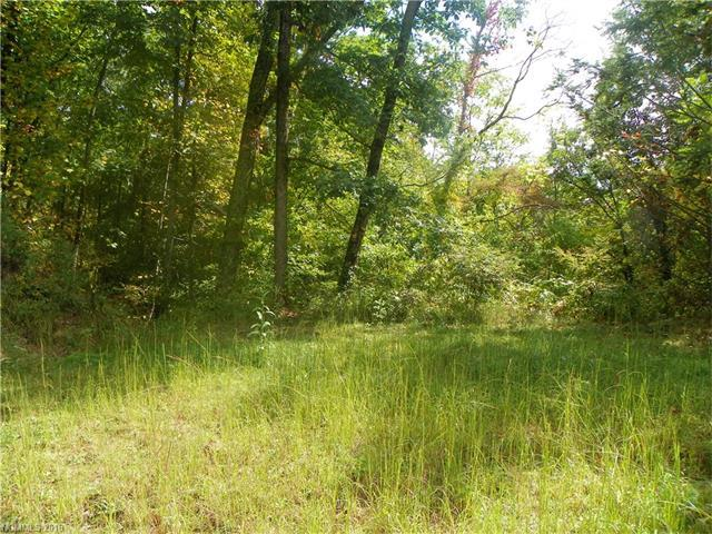 Lot 135 High Bluff Drive #135, Weaverville, NC 28787 (#3233364) :: Puffer Properties
