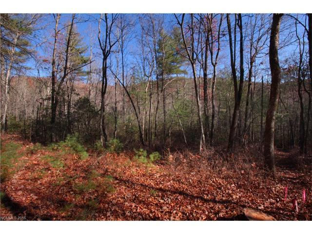 3B Dragon Tail Trail 3B, Brevard, NC 28712 (#3233667) :: Carlyle Properties