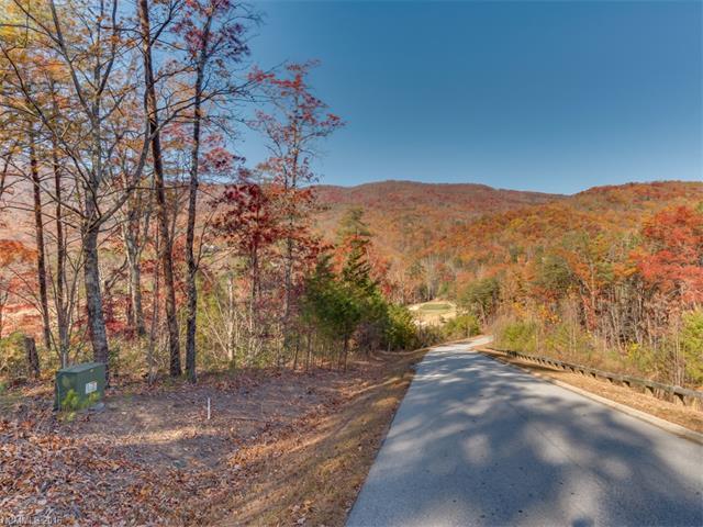 LOT 45 Deep Gap Farm Drive, Mill Spring, NC 28756 (#3233715) :: Rinehart Realty