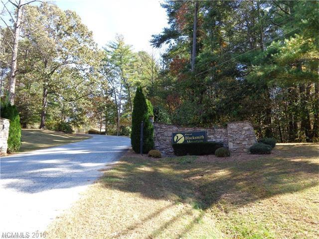 190 Overlook Point Road #86, Hendersonville, NC 28792 (#3234510) :: LePage Johnson Realty Group, LLC