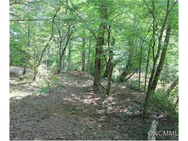 104 River Crest Parkway #104, Rutherfordton, NC 28139 (#3235953) :: Puffer Properties