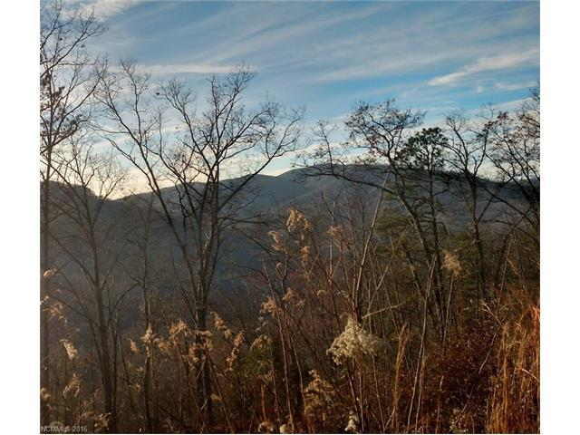 Lot 119 Bear River Lodge Trail, Marshall, NC 28753 (#3236826) :: Rinehart Realty