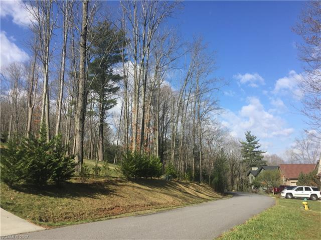 55 Wind Stone Drive #54, Woodfin, NC 28804 (#3237150) :: LePage Johnson Realty Group, LLC