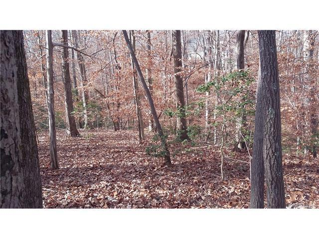 Lot 30 Oak Park Court #30, Iron Station, NC 28080 (#3238190) :: LePage Johnson Realty Group, LLC