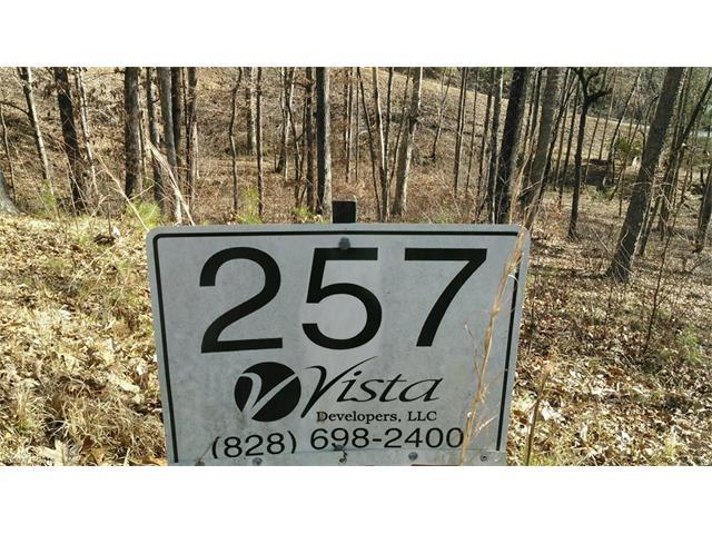 Lot 257 Bills Mountain Trail #257, Lake Lure, NC 28746 (#3238469) :: Stephen Cooley Real Estate Group
