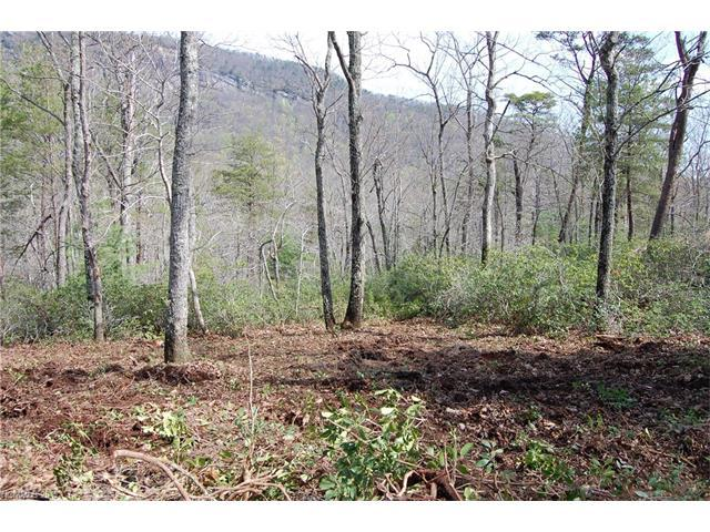 Lot 3 Garden Lane #3, Lake Lure, NC 28746 (#3240802) :: Puffer Properties