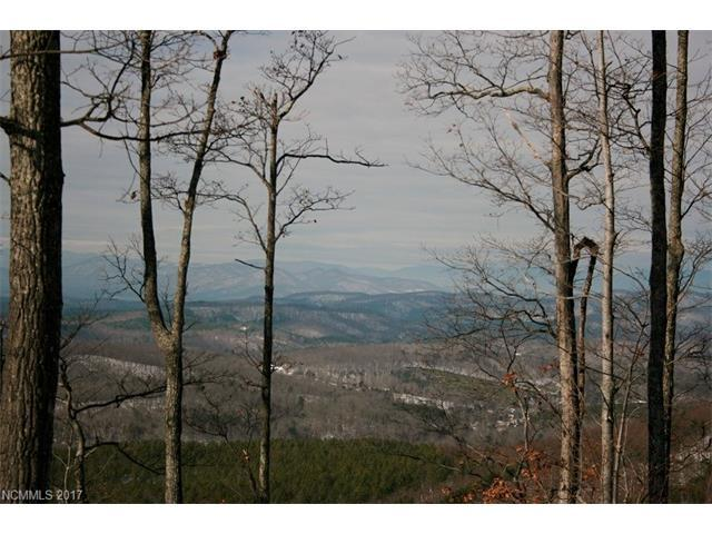 Lot 102 Arbra Mountain Way #102, Bostic, NC 28018 (#3241170) :: LePage Johnson Realty Group, LLC