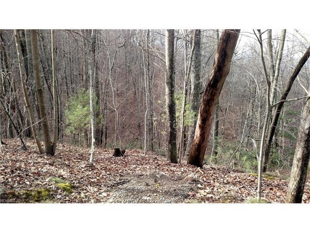 9999 OFF Mountain Page Road 17,18,19, Saluda, NC 28773 (#3244790) :: Puffer Properties