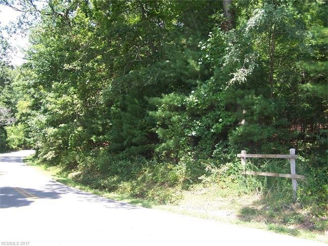 1163 Glenn Bridge Road SE, Arden, NC 28704 (#3245400) :: Exit Realty Vistas