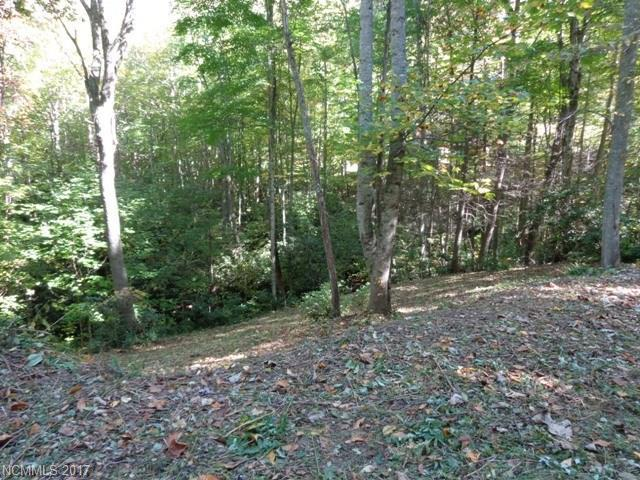 287 Sanctuary Drive, Waynesville, NC 28786 (#3245519) :: Rinehart Realty