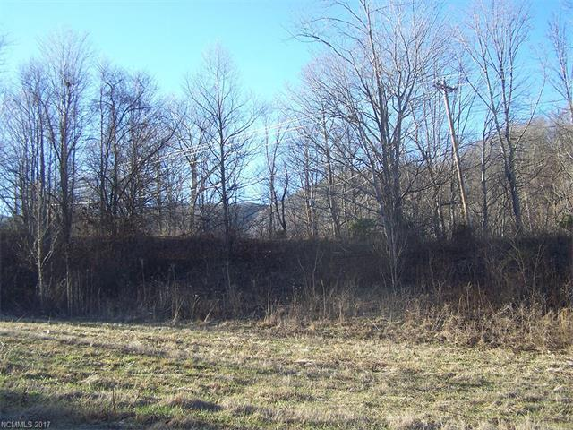 Lot 22 Tizwood Drive #22, Waynesville, NC 28785 (#3246213) :: Keller Williams Professionals
