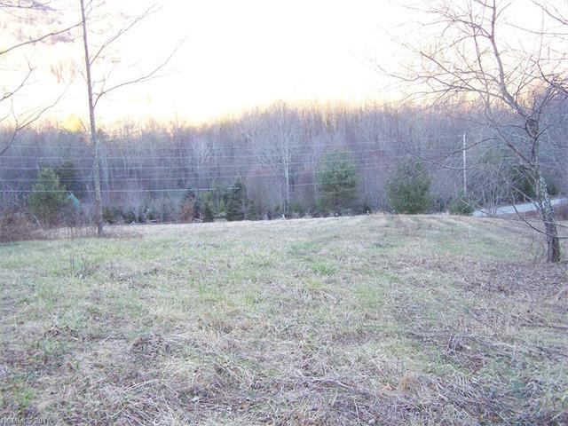Lot 5 Camden Downs Lane #5, Waynesville, NC 28785 (#3246337) :: Keller Williams Professionals