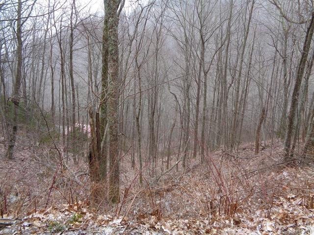 Lot 13 Wolf Laurel Drive, Maggie Valley, NC 28751 (#3246850) :: Puffer Properties