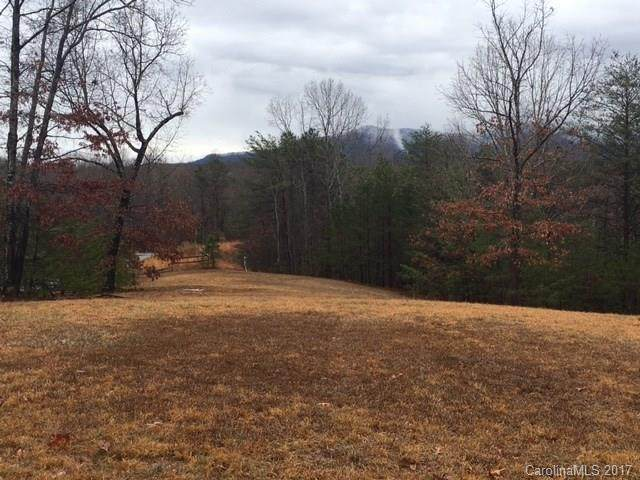 lot 28 Fallen Tree Lane, Mill Spring, NC 28756 (MLS #3247292) :: RE/MAX Journey