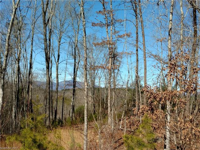 Lot 12 Cross Creek Trail S, Mill Spring, NC 28756 (#3248556) :: RE/MAX Four Seasons Realty