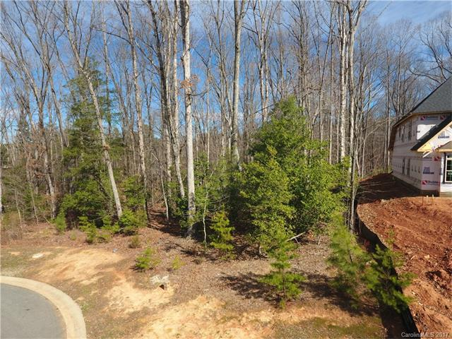 LOT 48 Halyard Drive, Denver, NC 28037 (#3249968) :: Caulder Realty and Land Co.