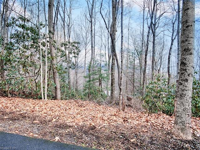 Lot C31 Birch Lane, Maggie Valley, NC 28751 (#3249990) :: The Andy Bovender Team