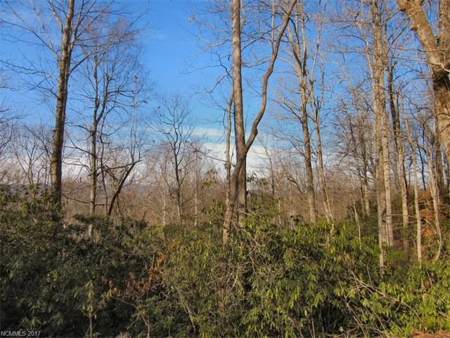 lot 29 Skye Drive #29, Pisgah Forest, NC 28768 (#3250174) :: Miller Realty Group