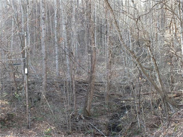 000 Friar Tuck Lane #2, Maggie Valley, NC 28751 (#3250533) :: Puffer Properties