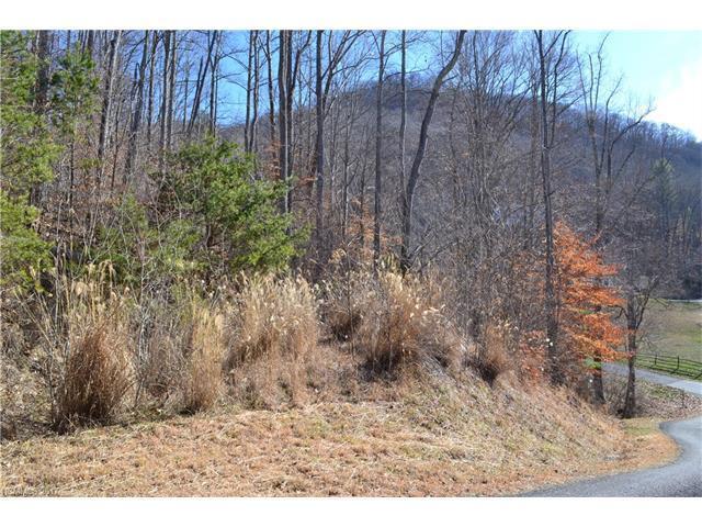 44 Applewood Lane #94, Weaverville, NC 28787 (#3252135) :: Mossy Oak Properties Land and Luxury