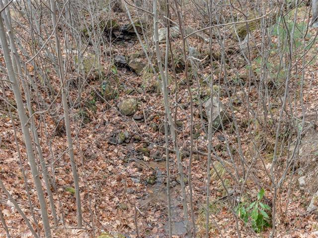 LOT 231 Chesterfield Drive, Mill Spring, NC 28756 (#3252256) :: Puffer Properties