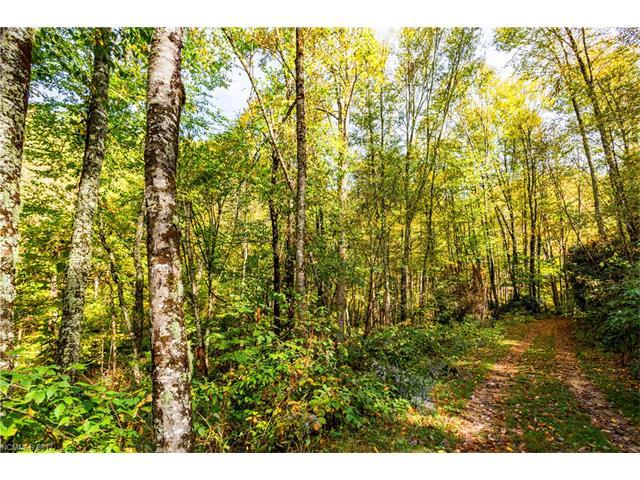 0000 Black Rock Road #12, Qualla, NC 28719 (#3253863) :: Johnson Property Group - Keller Williams
