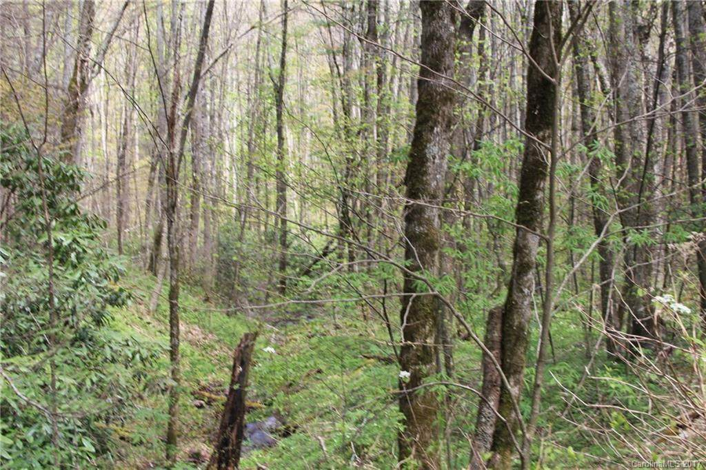 0000 Big Spring Trail - Photo 1