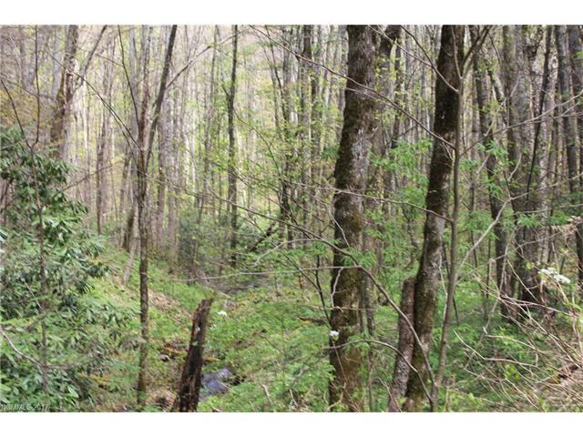 0000 Big Spring Trail #61, Qualla, NC 28719 (#3253867) :: Exit Mountain Realty