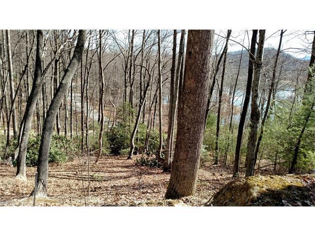 400 Haven Drive, Saluda, NC 28773 (#3254020) :: Exit Mountain Realty