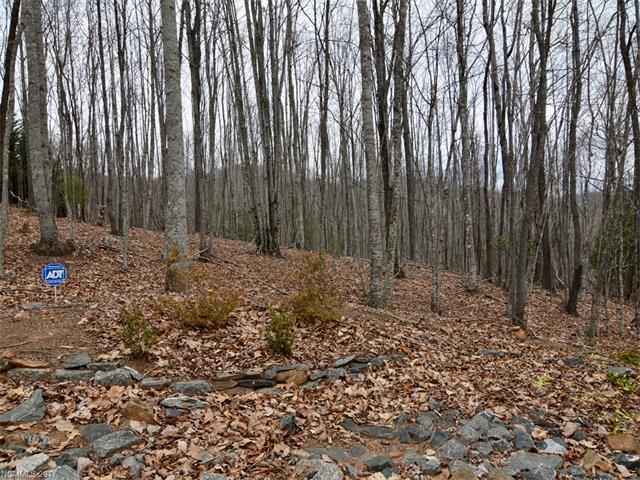 Lot 5 Smokemont Drive #5, Arden, NC 28704 (#3255278) :: Exit Realty Vistas