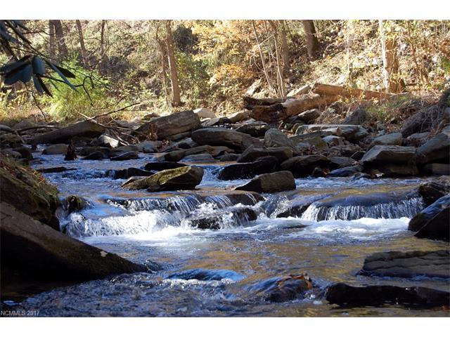 Lot 3A Reedy Patch Creek Drive 3A, Bat Cave, NC 28710 (#3256745) :: Washburn Real Estate