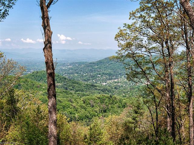 LOT 17 Peregrine Lane #17, Asheville, NC 28804 (#3257039) :: Puffer Properties
