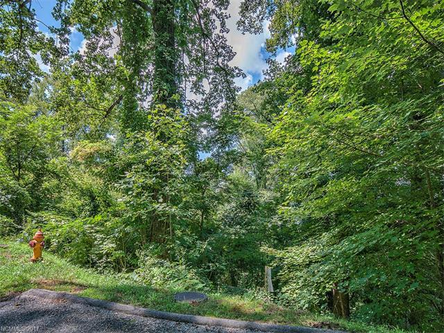 LOT 23 Peregrine Lane #23, Asheville, NC 28804 (#3257131) :: Puffer Properties