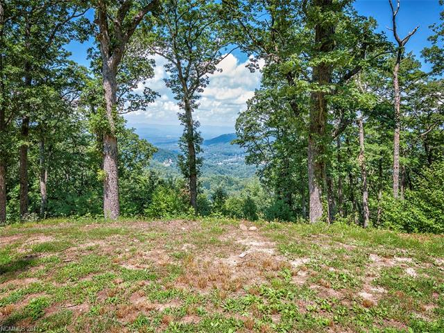 LOT 19 Peregrine Lane #19, Asheville, NC 28804 (#3257143) :: Puffer Properties