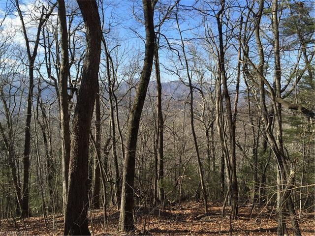 20 Jacobs Ladder Lane #14, Swannanoa, NC 28778 (#3257271) :: Rinehart Realty