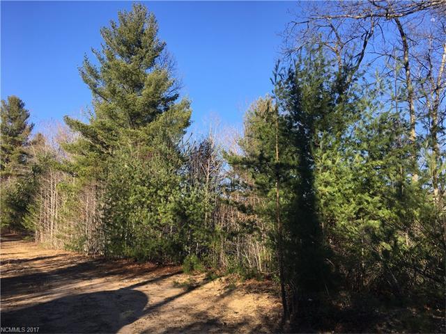 Lot 25 Majestic Ridge Drive, Hendersonville, NC 28792 (#3259195) :: Exit Mountain Realty