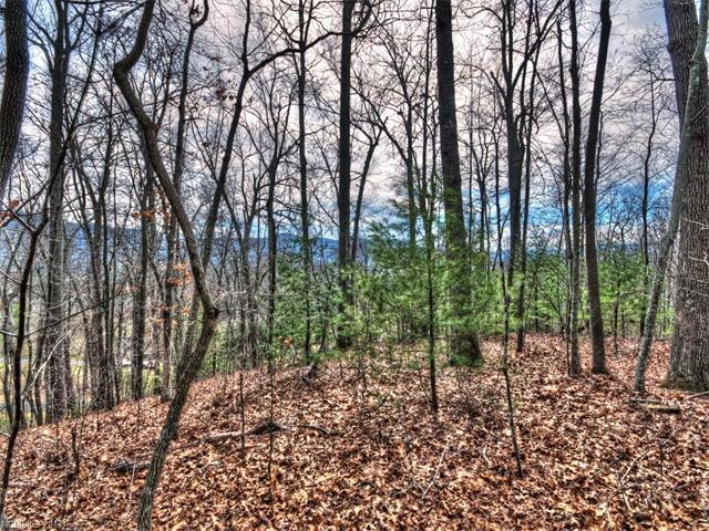 00 Woods Edge Road, Waynesville, NC 28786 (#3259373) :: Exit Mountain Realty