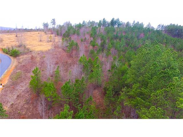 Lot 37 Clearwater Drive, Nebo, NC 28761 (#3262205) :: Puffer Properties