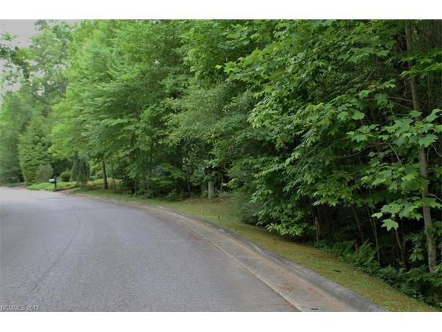 Lot 59R Deerlake Road, Brevard, NC 28712 (#3263335) :: The Temple Team