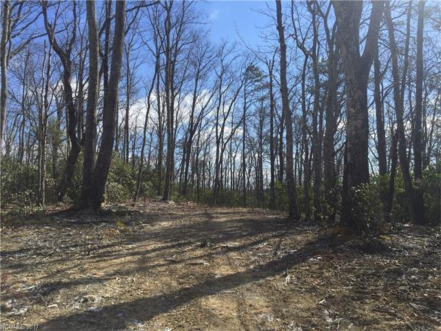 TBD LOT# 65 Marshall Ridge Road #65, Hendersonville, NC 28792 (#3263487) :: Leigh Brown and Associates with RE/MAX Executive Realty