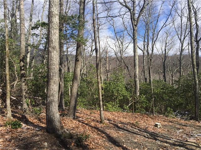 TBD LOT# 67 Marshall Ridge Road #67, Hendersonville, NC 28792 (#3263566) :: The Premier Team at RE/MAX Executive Realty