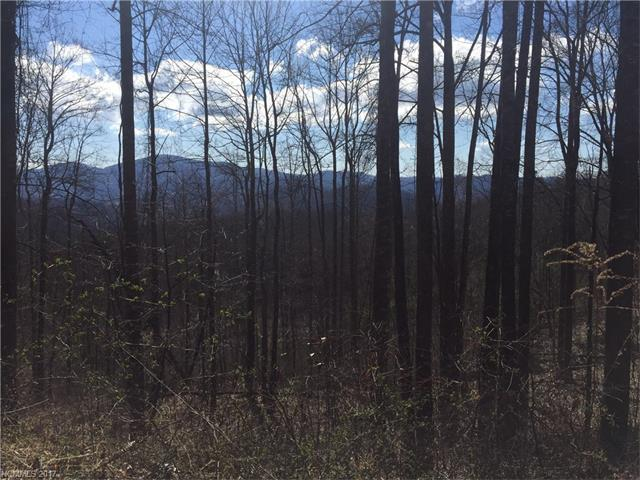 TBD LOT# 36 Laurel Creek Drive #36, Hendersonville, NC 28792 (#3264052) :: The Premier Team at RE/MAX Executive Realty